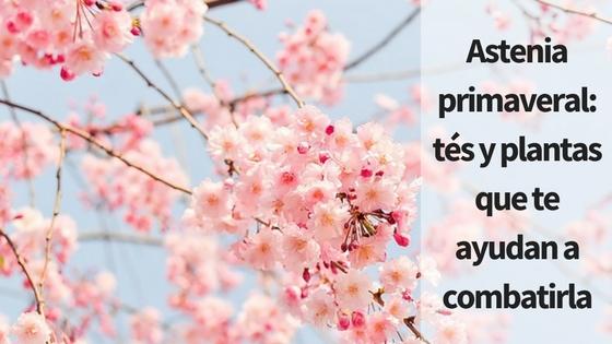 Astenia primaveral: tés y plantas que te ayudan a combatirla