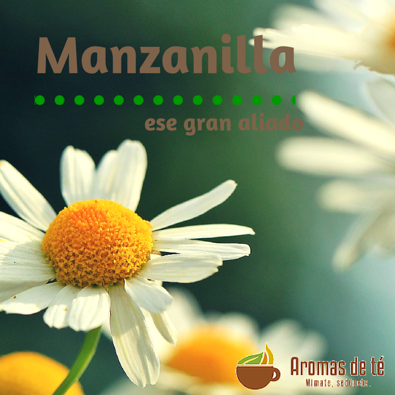 Manzanilla, ese gran aliado que no puede faltar en casa