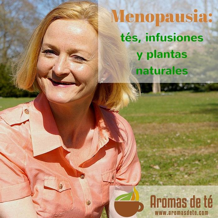 Menopausa: tes, infusions i plantes naturals