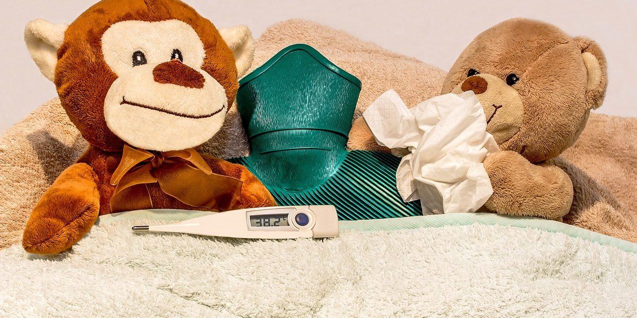 Tés e infusiones para el resfriado