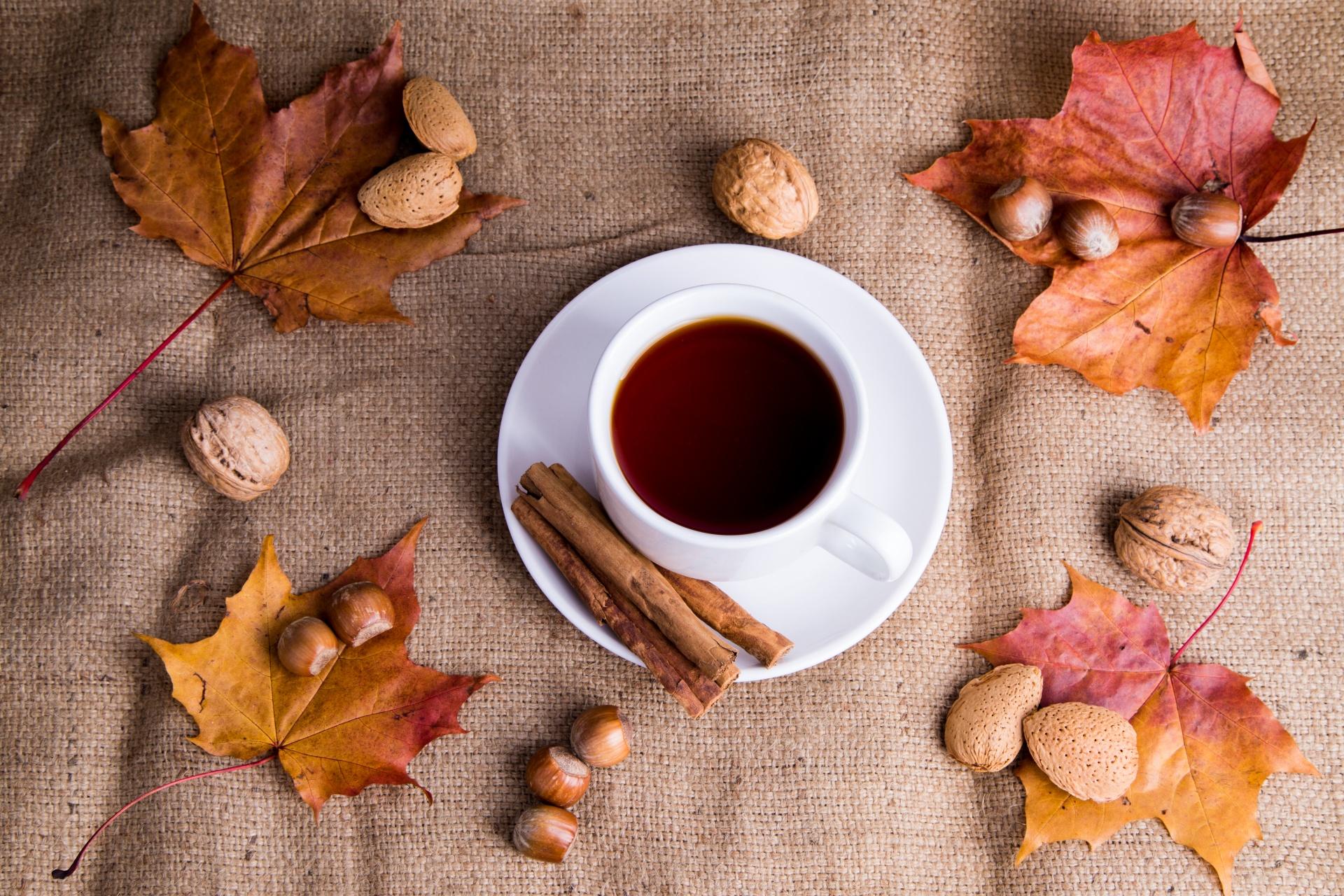 Hierbas y plantas medicinales de otoño, en tés e infusiones