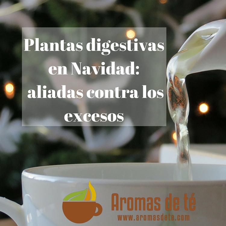 Plantas digestivas en Navidad: aliadas contra los excesos