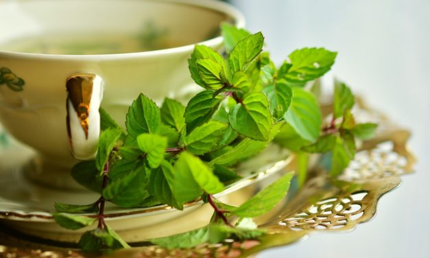 Plantas medicinales para combatir el estrés y la ansiedad