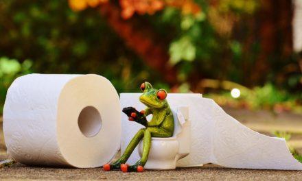 Tés e infusiones para tratar la diarrea