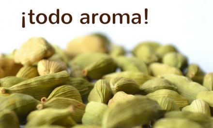 Beneficios del cardamomo, todo aroma y sabor