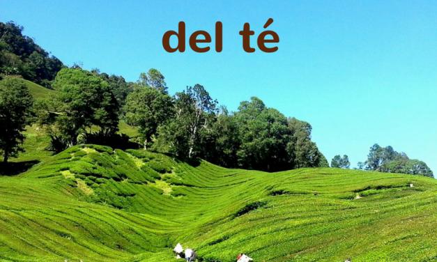15 de diciembre: Día Internacional del té