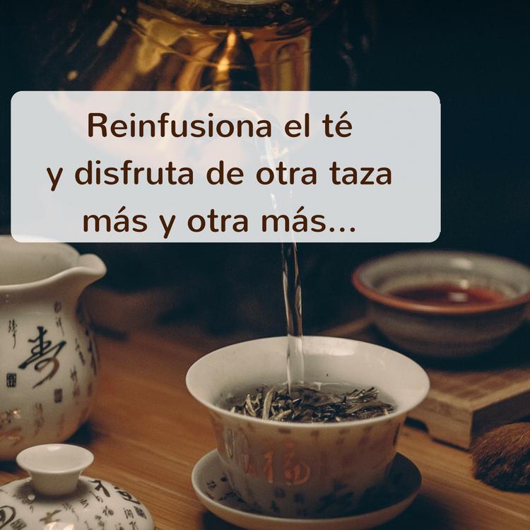 Reinfusionar el té
