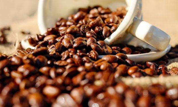 Principales tipos de café, los mejores orígenes y sus propiedades