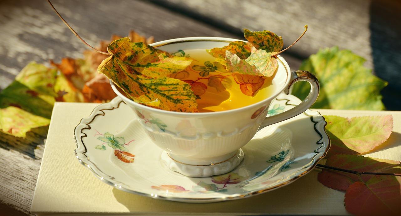 Cómo beneficiarte de las plantas medicinales y frutas de otoño en tés e infusiones