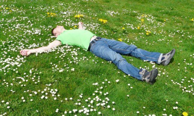 Las mejores plantas medicinales y especias para cuidar tus defensas esta primavera