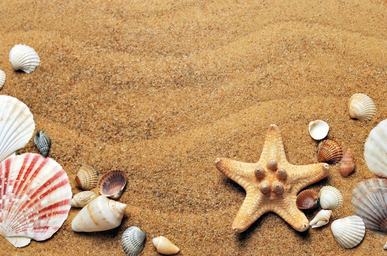 Enfermedades comunes del verano y consejos de salud