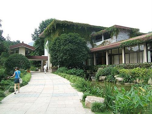 3 museos del té que puedes visitar en el mundo