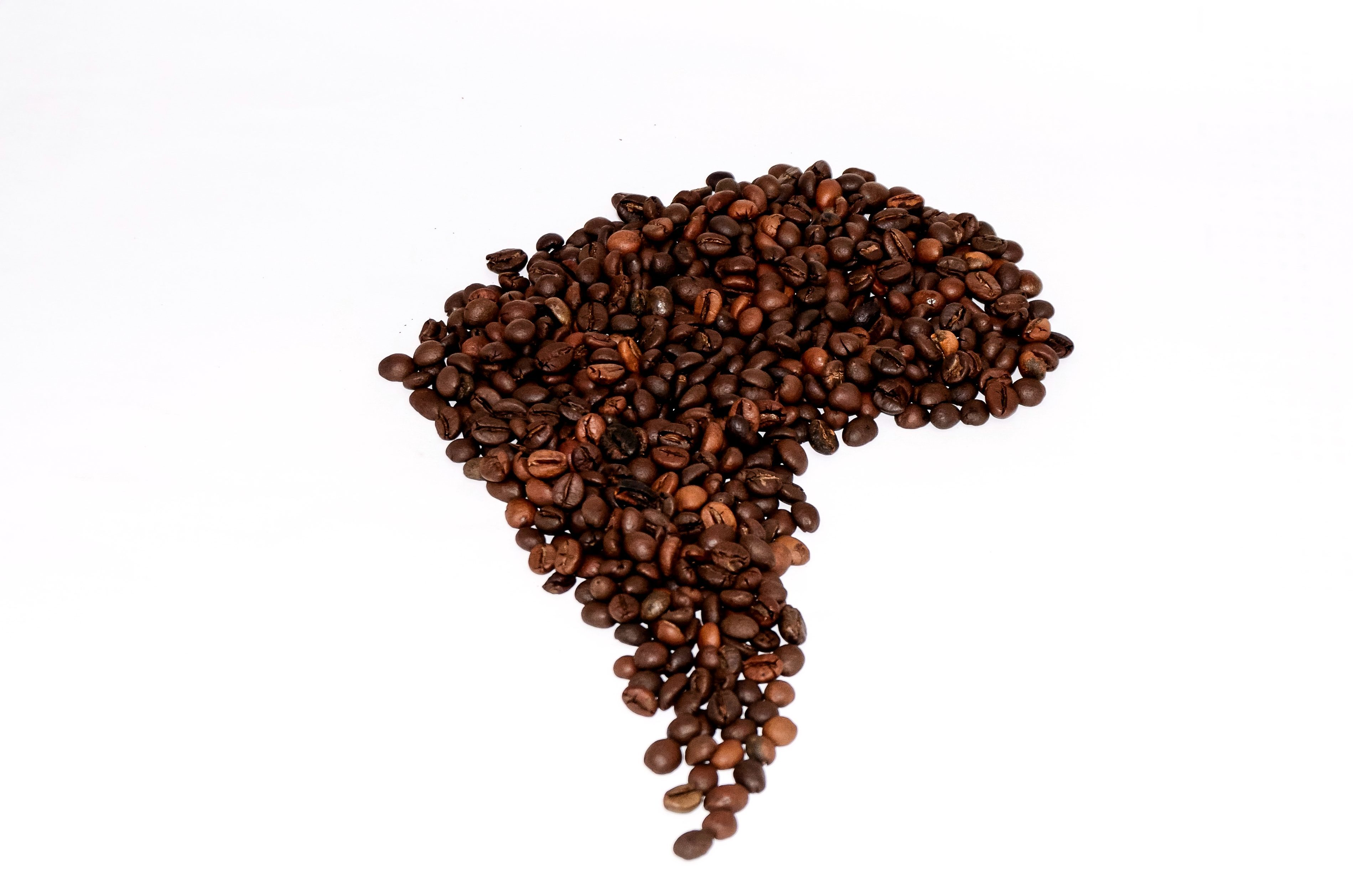 Todo sobre el café de América Latina: un sabor que traspasa fronteras