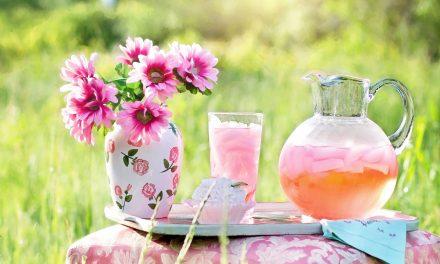5 ideas de infusiones refrescantes a base de té y plantas medicinales