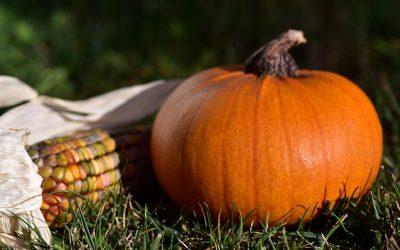 Cómo cuidar nuestras defensas en otoño